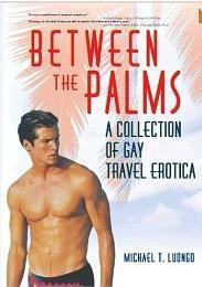 Between the Palms, from Haworth Press gay travel erotica, fantasymichael luongo gay sex tourism gay fun palm springs beaches